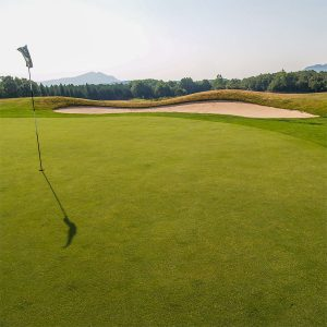 Casa Rural Gaztelubidea. Izki Golf